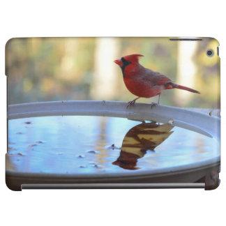 USA, Tennessee, Athens. Backyard Bird Bath 2 Case For iPad Air