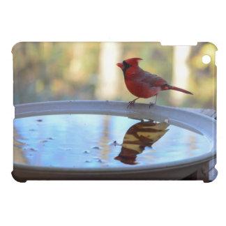 USA, Tennessee, Athens. Backyard Bird Bath 2 iPad Mini Case