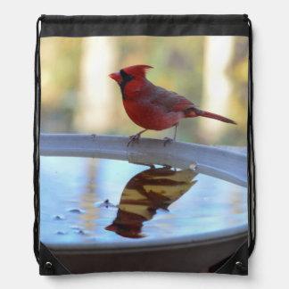 USA, Tennessee, Athens. Backyard Bird Bath 2 Drawstring Backpack