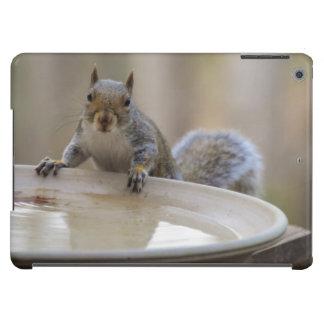 USA, Tennessee, Athens. Backyard Bird Bath iPad Air Cover