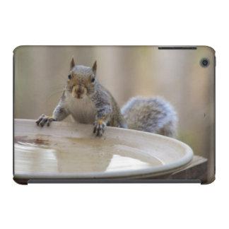 USA, Tennessee, Athens. Backyard Bird Bath iPad Mini Case