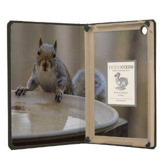 USA, Tennessee, Athens. Backyard Bird Bath iPad Mini Cases