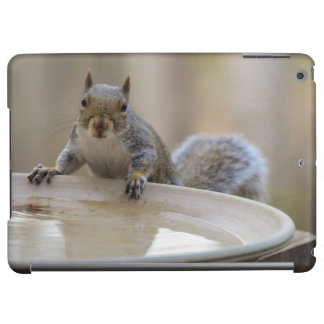 USA, Tennessee, Athens. Backyard Bird Bath Cover For iPad Air