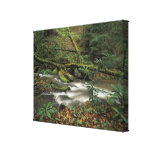 USA, Tennessee. Big South Fork National River Canvas Print