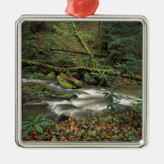 USA, Tennessee. Big South Fork National River Metal Ornament