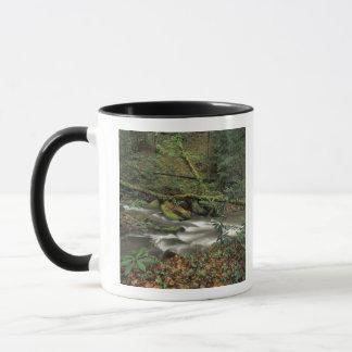 USA, Tennessee. Big South Fork National River Mug