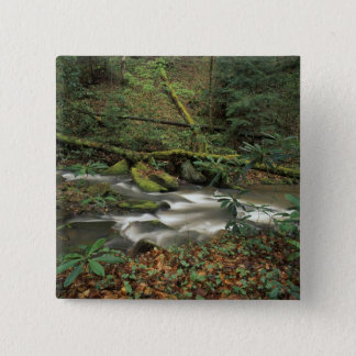 USA, Tennessee. Big South Fork National River Pinback Button