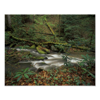 USA, Tennessee. Big South Fork National River Poster