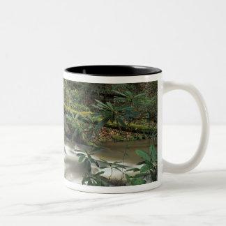 USA, Tennessee. Big South Fork National River Two-Tone Coffee Mug