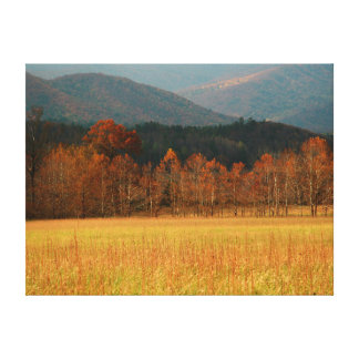 USA, Tennessee. Cades Cove In Smoky Mountain Gallery Wrapped Canvas