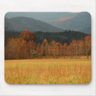 USA, Tennessee. Cades Cove In Smoky Mountain Mouse Pads