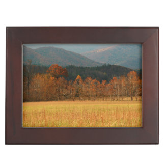 USA, Tennessee. Cades Cove In Smoky Mountain Keepsake Boxes