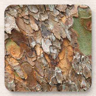 USA, Tennessee, Close Up Of Bark On A Tree Beverage Coasters