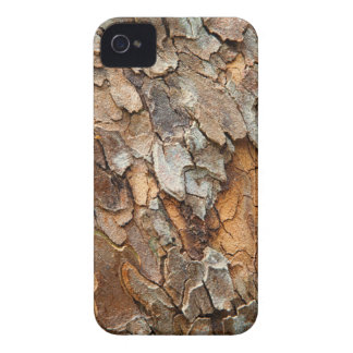 USA, Tennessee, Close Up Of Bark On A Tree iPhone 4 Case