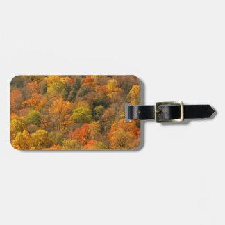USA, Tennessee. Fall Foliage 2 Bag Tags