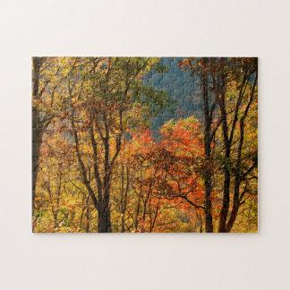 USA, Tennessee. Fall Foliage Jigsaw Puzzle