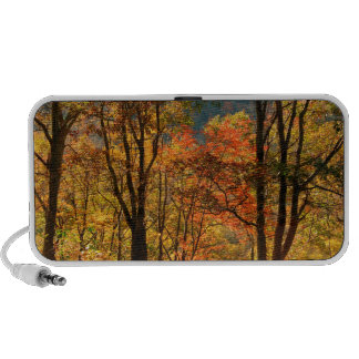 USA, Tennessee. Fall Foliage Mini Speaker