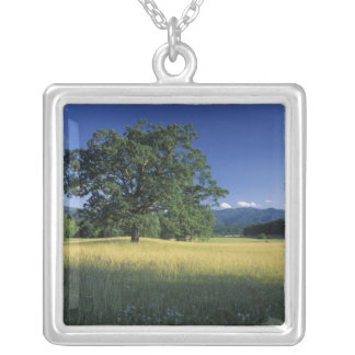 USA, Tennessee. Great Smokey Mountains 3 Silver Plated Necklace