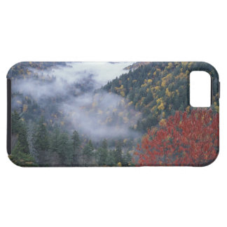 USA, Tennessee, Great Smokey Mountains National iPhone SE/5/5s Case