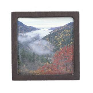 USA, Tennessee, Great Smokey Mountains National Keepsake Box