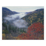 USA, Tennessee, Great Smokey Mountains National Poster
