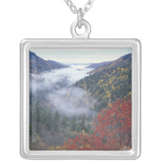 USA, Tennessee, Great Smokey Mountains National Silver Plated Necklace