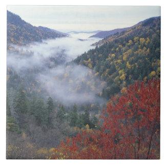 USA, Tennessee, Great Smokey Mountains National Tile