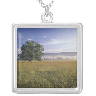 USA, Tennessee. Great Smokey Mountains Silver Plated Necklace