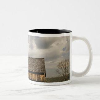 USA, Tennessee, Great Smoky Mountain NP. Two-Tone Coffee Mug