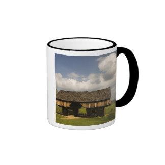 USA, Tennessee, Great Smoky Mountain NP. Ringer Coffee Mug