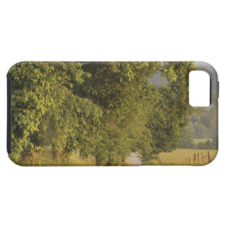 USA, Tennessee, Great Smoky Mountains National 2 iPhone SE/5/5s Case