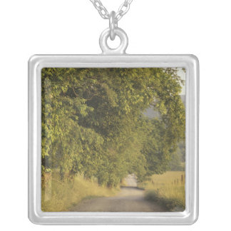 USA, Tennessee, Great Smoky Mountains National 2 Silver Plated Necklace