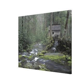 USA, Tennessee, Great Smoky Mountains National 3 Canvas Print