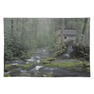 USA, Tennessee, Great Smoky Mountains National 3 Cloth Placemat