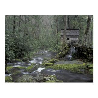 USA, Tennessee, Great Smoky Mountains National 3 Postcard