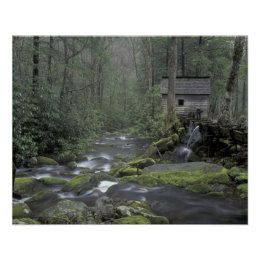USA, Tennessee, Great Smoky Mountains National 3 Poster