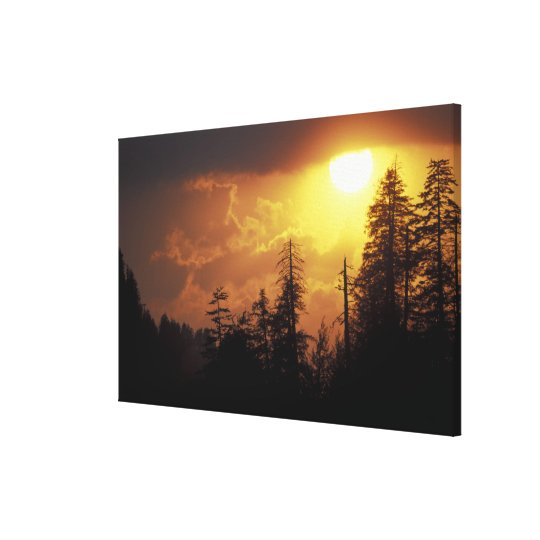 USA, Tennessee, Great Smoky Mountains NP. 2 Canvas Print