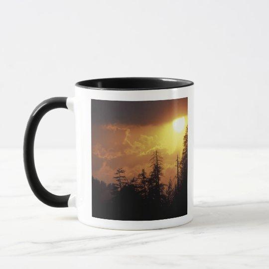 USA, Tennessee, Great Smoky Mountains NP. 2 Mug