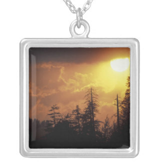 USA, Tennessee, Great Smoky Mountains NP. 2 Necklace