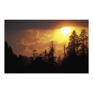 USA, Tennessee, Great Smoky Mountains NP. 2 Photo Art