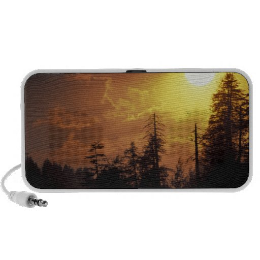 USA, Tennessee, Great Smoky Mountains NP. 2 Mp3 Speaker