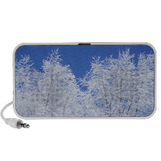 USA, Tennessee, Great Smoky Mountains NP, 2 Portable Speaker