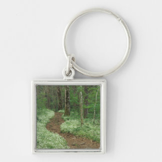 USA, Tennessee, Great Smoky Mountains NP, 3 Silver-Colored Square Keychain