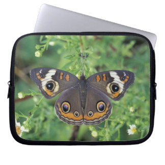 USA, Tennessee, Great Smoky Mountains NP. Laptop Sleeve