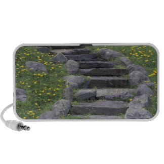 USA, Tennessee, Great Smoky Mountains NP. Stone Laptop Speaker