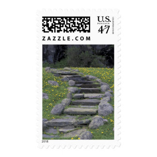 USA, Tennessee, Great Smoky Mountains NP. Stone Stamp
