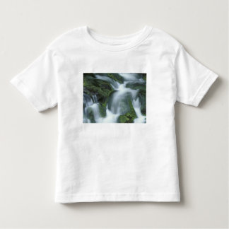 USA, Tennessee, Great Smoky Mountains NP. Toddler T-shirt