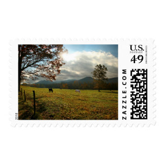 USA, Tennessee. Horses In Cades Cove Valley Postage