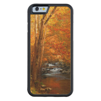 USA, Tennessee. Rushing Mountain Creek 2 Carved Maple iPhone 6 Bumper Case