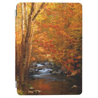 USA, Tennessee. Rushing Mountain Creek 2 iPad Air Cover